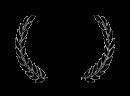 premi sant elies 2014